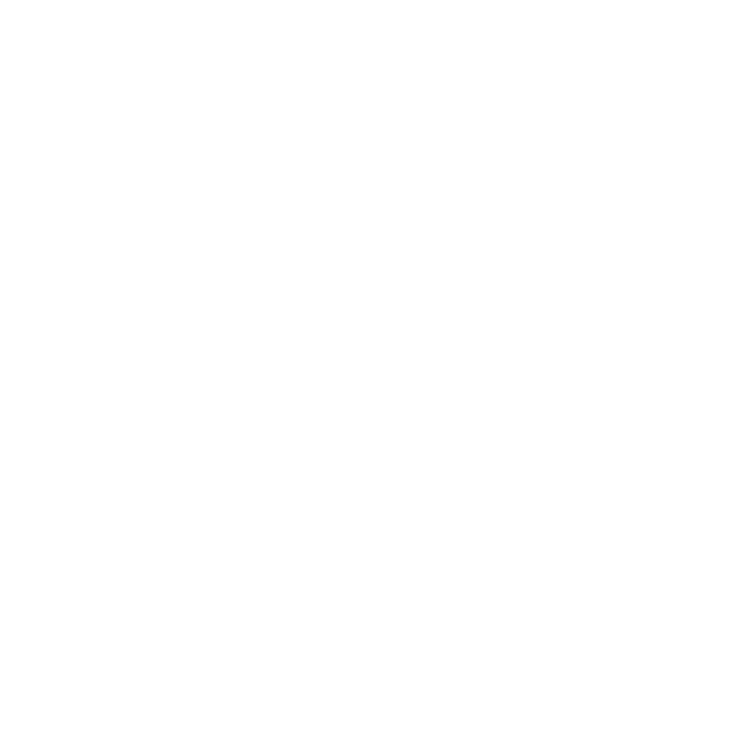 Logo Levy and Partners